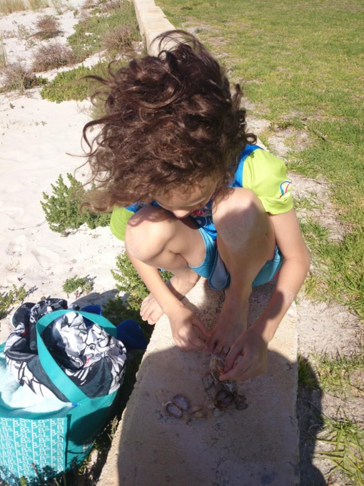 10yo with bivalve shell collection from beach at Marina at Jurien Bay, Western Australia