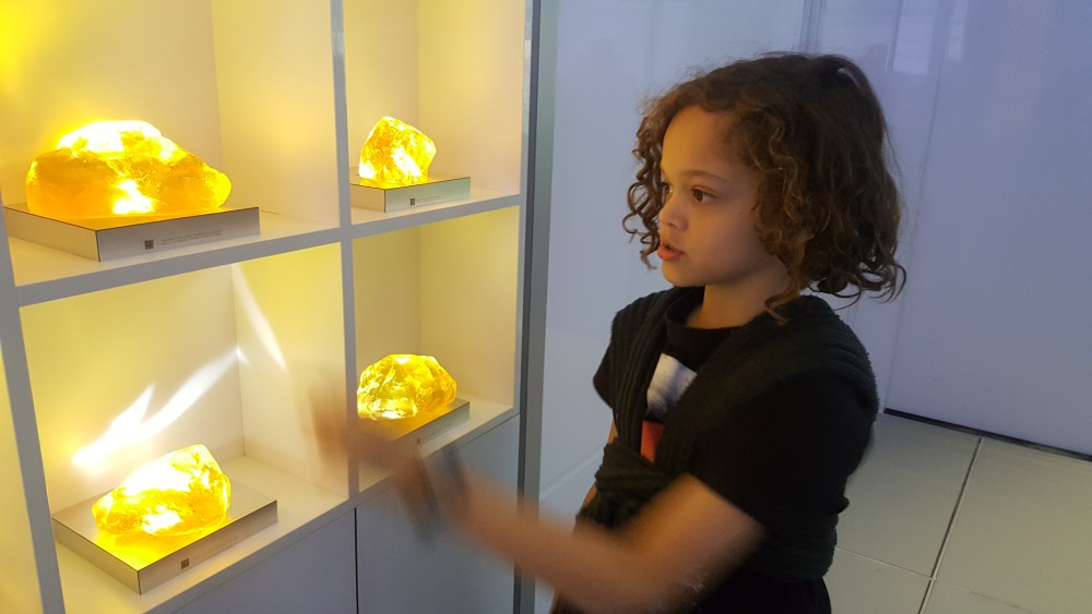 11yo studying amber display at Jurassic World Exhibition, Melbourne Museum, Victoria, Australia