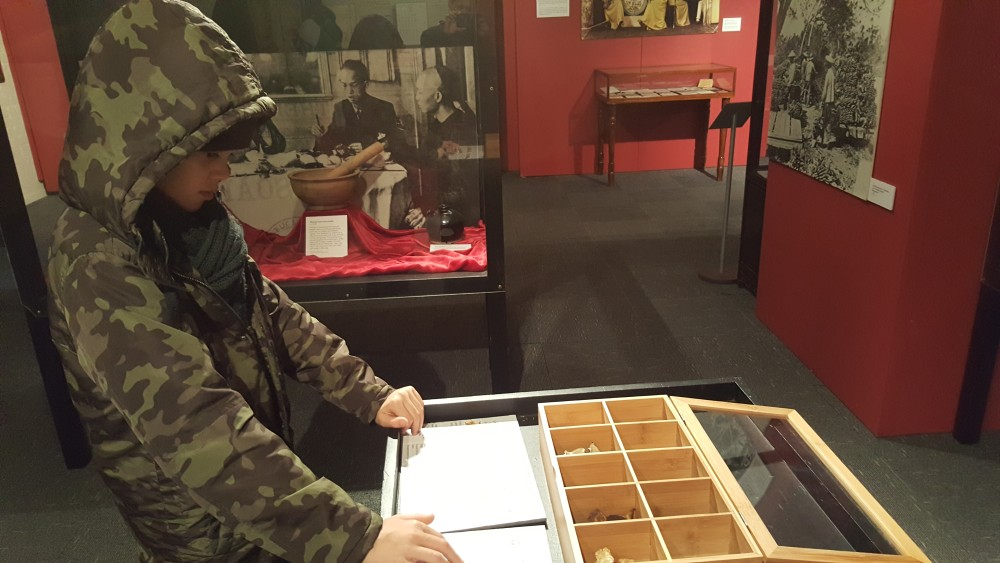11yo studying Chinese herbs at Chinese Museum, Melbourne, Australia