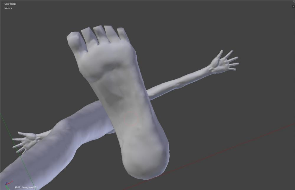 3d foot wip