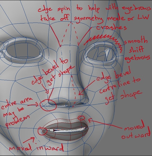 3d diagram showing where the model face tweaks are and highlighting problem areas