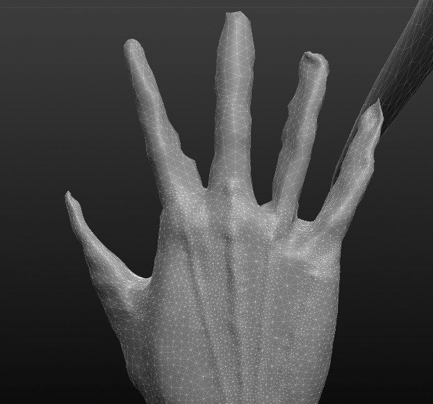 Makied hand after using Sculptris grab tool