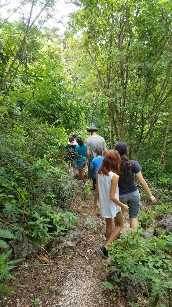 walking-through-jungle-to-golf-course-lookout-christmas-island