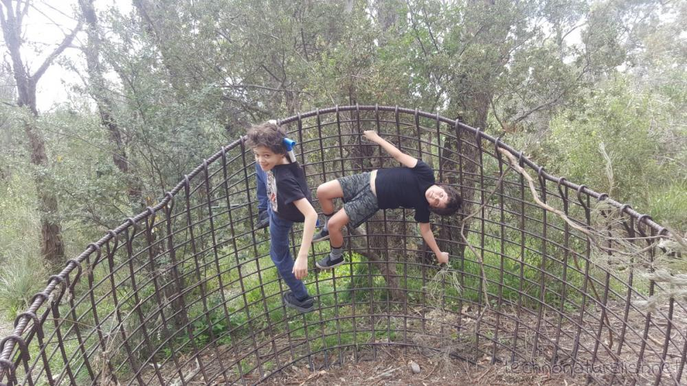 13yo-9yo-hanging-out-nature-playspace-kings-park-wa
