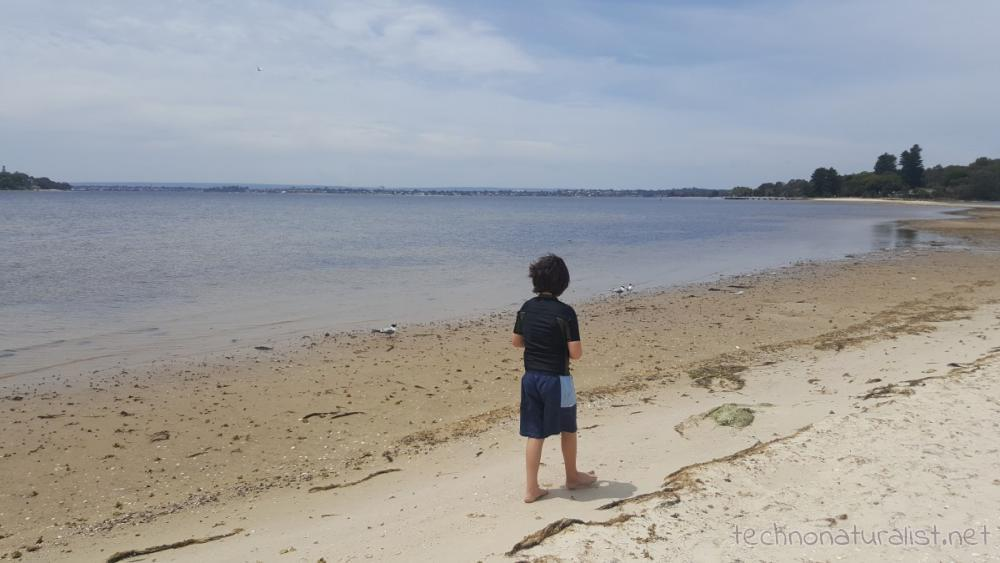 9yo-walking-on-sandbar-pt-walter
