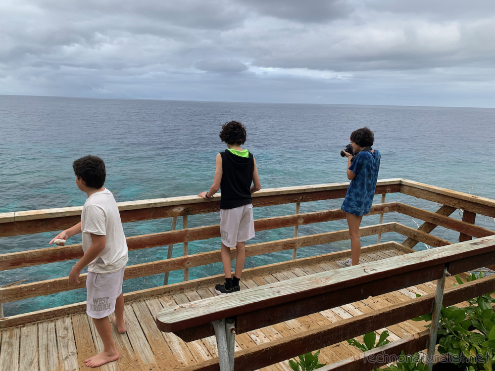 """kids at lookout """"upstairs"""" at Lily Beach, Christmas Island"""