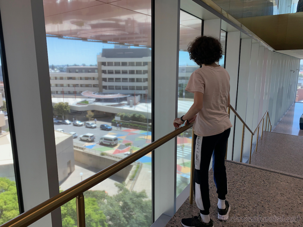 16yo admiring the view from the stair landing going down from third to second floor, Boola Bardip Museum, Perth, Western Australia