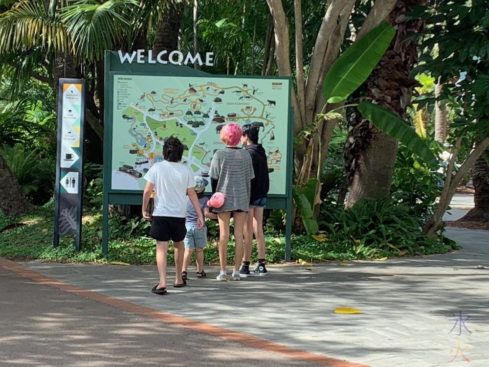 12yo, 4yo and two teenagers studying map at Perth Zoo, Western Australia