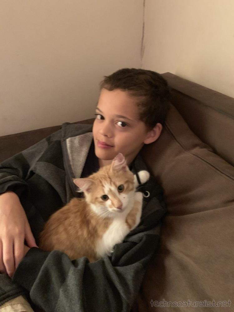 14yo and kitten