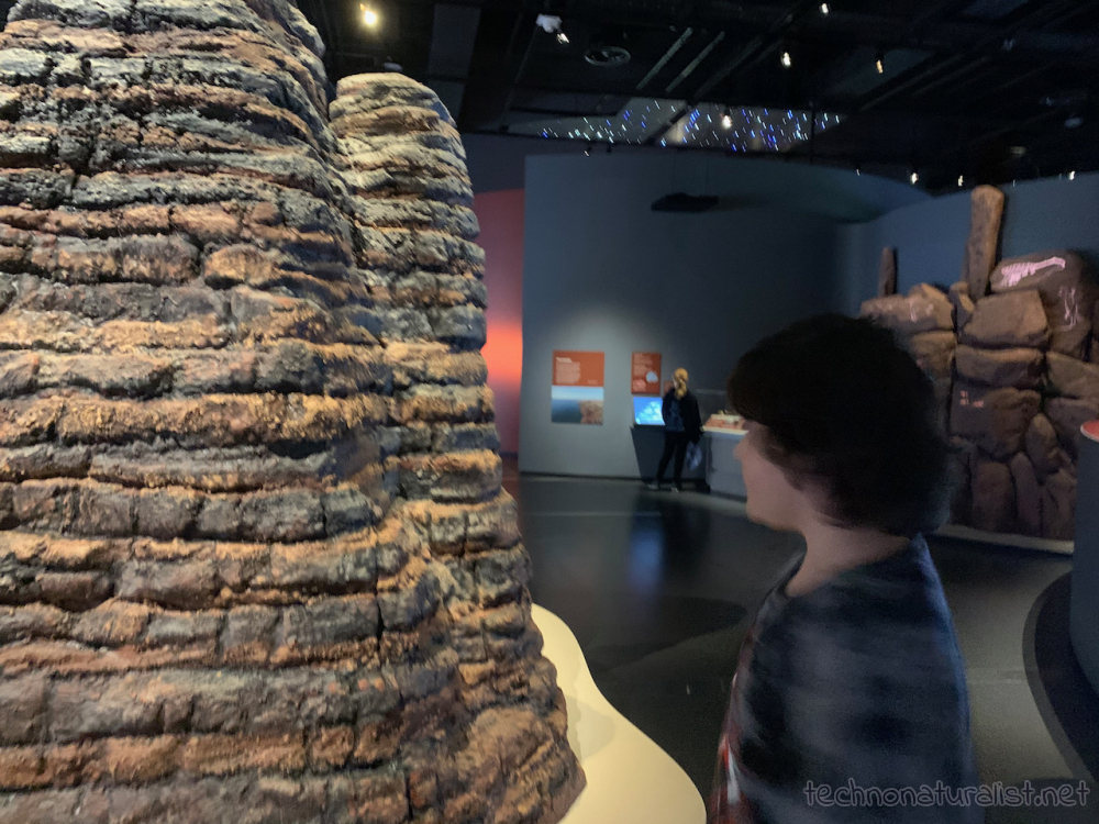 geological scale modes at Boola Bardip Museum, Perth, Western Australia