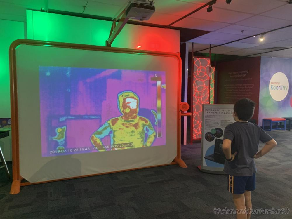 10yo looking at thermographic image