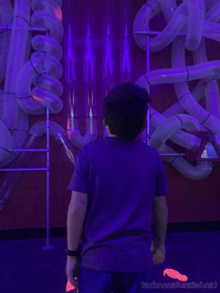 10yo watching scraps of cloth moving through air valve maze at Scitech, Perth, Western Australia