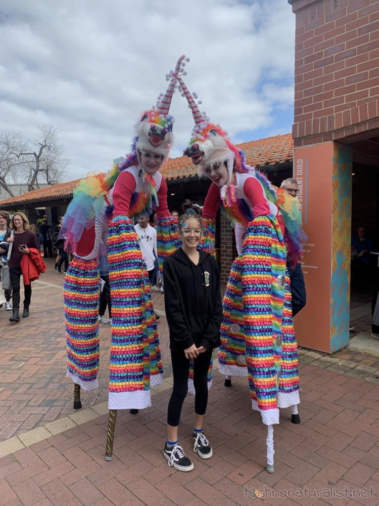 Tall unicorns at Curtin University, Western Australia