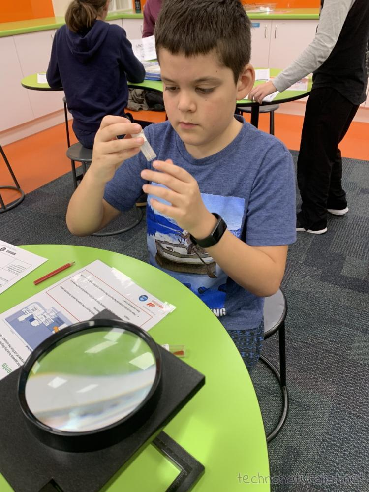 10yo studying samples at forensic science workshop, Scitech, Western Australia