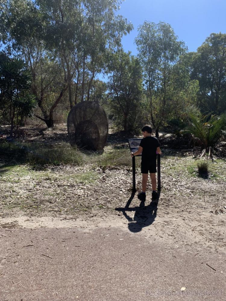 10yo checking out sculpture at Piney Lakes Reserve, Bateman, Western Australia