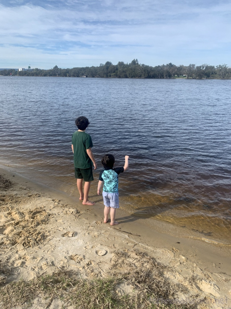 11yo and 4yo at edge of the river at AP Hinds Reserve, Bayswater, Western Australia