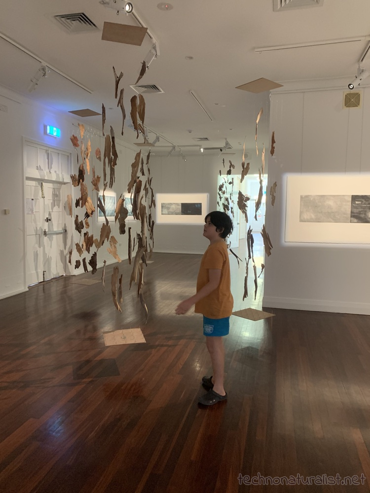 11yo looking at hanging exhibition at Heathcote Gallery, Applecross, Western Australia