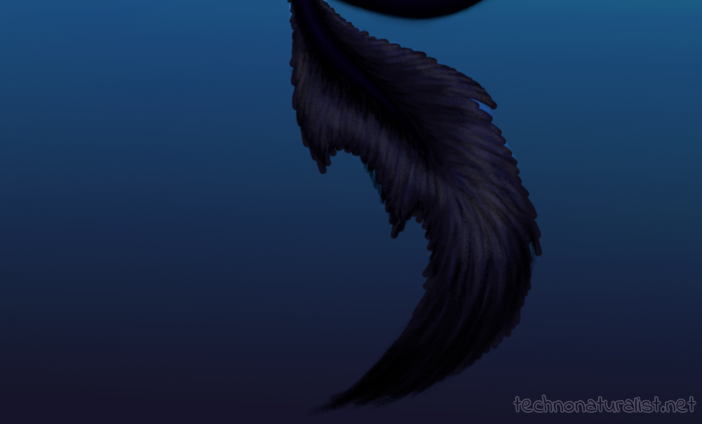 Twilight tail closeup