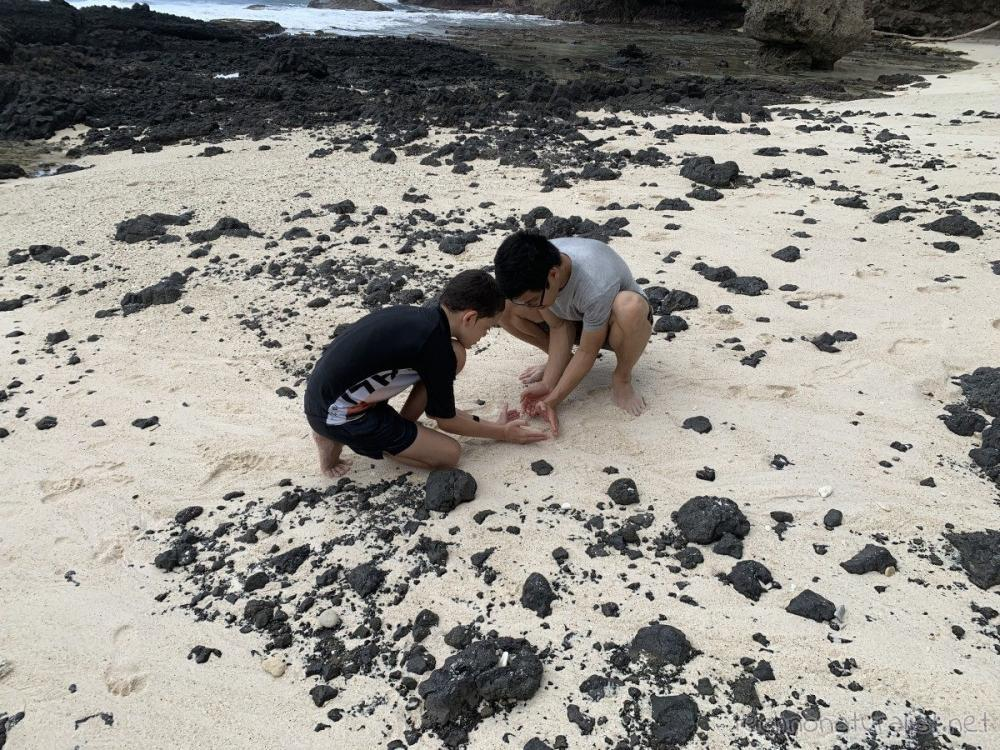 cousin and 14yo corralling a crab