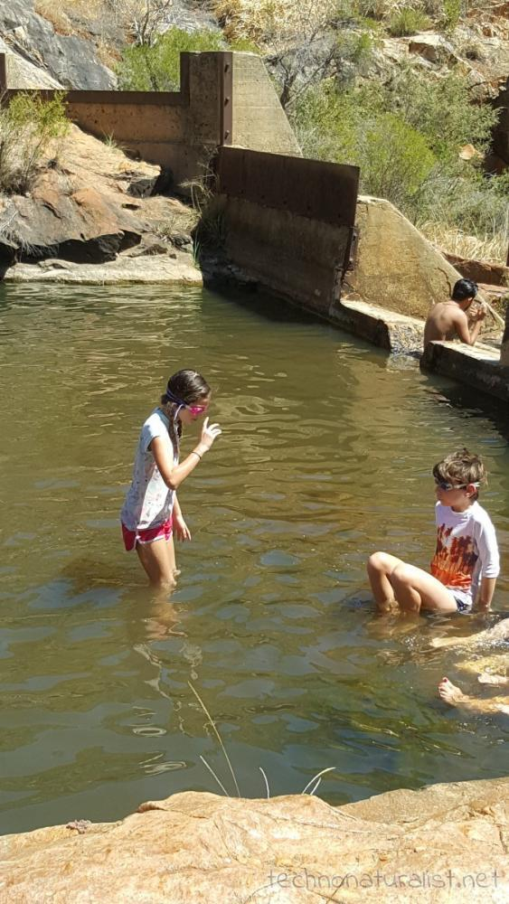 serpentine-falls-waters-cold