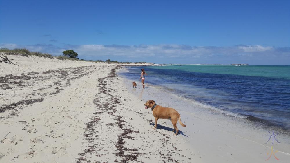 walking-back-along-dog-beach-jurien-bay-western-australia